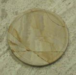 fossil sandstone collectible coasters